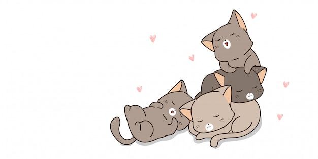 Очаровательные кошки спят