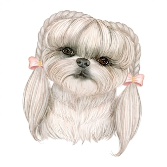 Adorable cute dog with hair on braids ribbon watercolor illustration