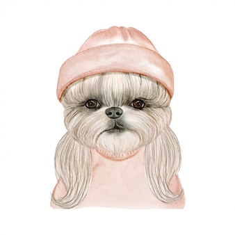 Adorable cute dog with hat watercolor illustration