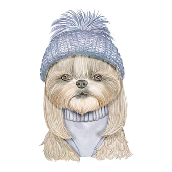 Adorable cute dog with knitted hat watercolor illustration