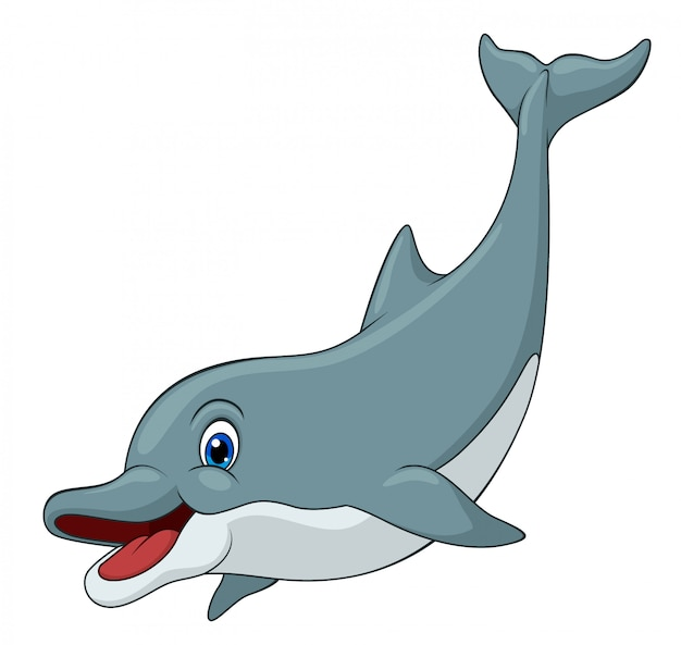 Adorable dolphin cartoon