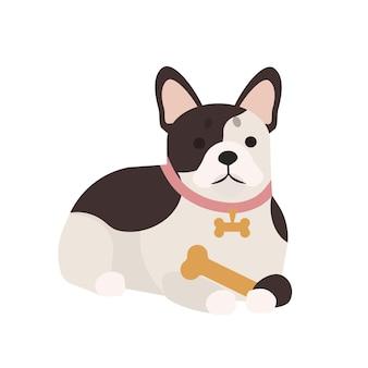 骨付きの愛らしいフレンチブルドッグ。白い背景で隔離のかわいい愛らしい純血種の犬や子犬を横にしています。面白い家畜やペット。ゴージャスなフレンチブルドッグ。フラット漫画スタイルのベクトルイラスト。