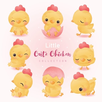 Adorable little chicken illustration in watercolor for nursery decoration