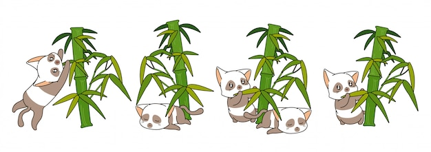 Adorable panda cats with bamboo illustration
