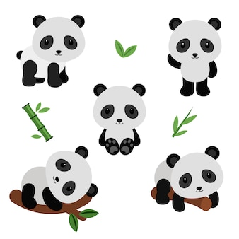 Adorable pandas in flat style.