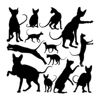 Adorable sphynx cat animal silhouettes