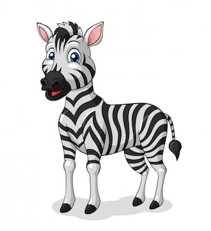 Adorable zebra cartoon