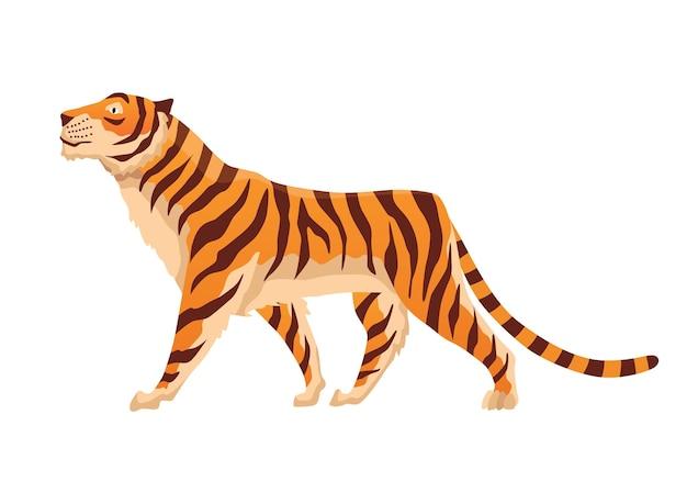 성인 큰 호랑이. 야생 동물에서 귀여운 동물. 큰 고양이. 육식 포유류. 자유형 만화 동물 디자인