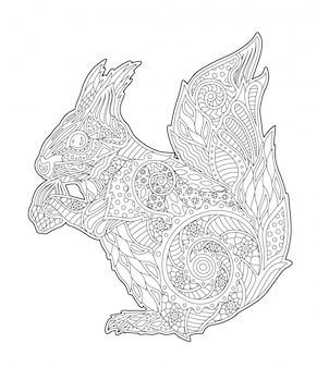 Adult coloring book page with beautiful squirrel