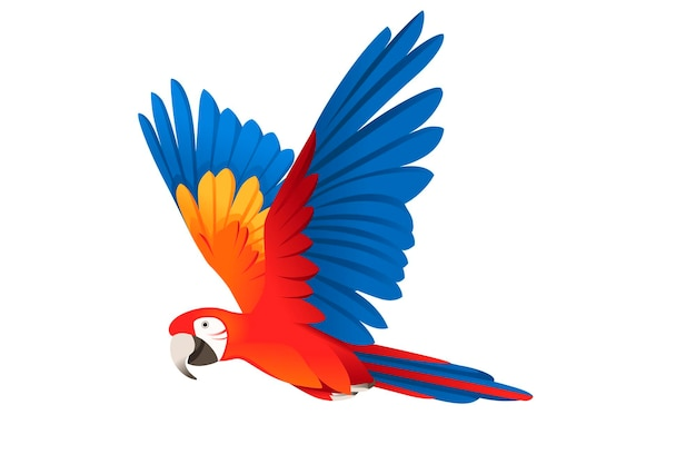 Взрослый попугай красно-зеленый ара ара летающий (ara chloropterus) мультфильм птица дизайн плоские векторные иллюстрации, изолированные на белом фоне.