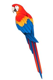 Взрослый попугай красно-зеленой ара сидя (ara chloropterus) мультфильм птица дизайн плоские векторные иллюстрации, изолированные на белом фоне.