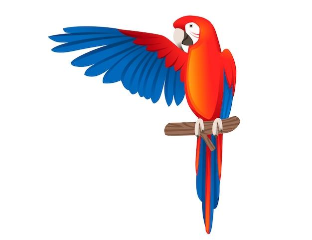Взрослый попугай красно-зеленого ара ара сидит на ветке и машет крыльями (ара chloropterus) мультфильм птица дизайн плоские векторные иллюстрации, изолированные на белом фоне.