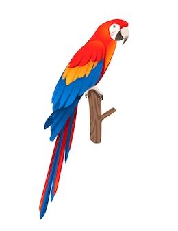 Взрослый попугай красно-зеленой ара ара сидит на ветке (ara chloropterus) мультфильм птица дизайн плоские векторные иллюстрации, изолированные на белом фоне.