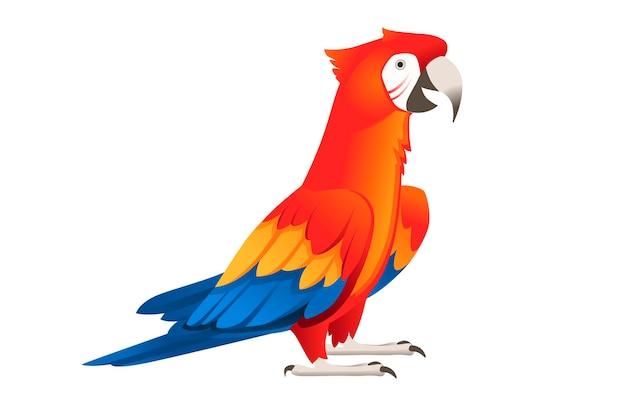 Взрослый попугай красно-зеленой ара ара, стоящий на двух ногах (ara chloropterus) мультфильм птица дизайн плоские векторные иллюстрации, изолированные на белом фоне.
