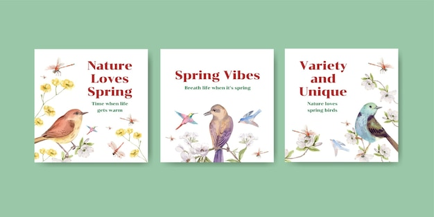 Advertise template set with birds and spring concept