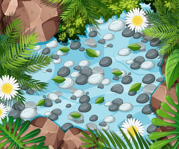 Aerial forest scene with stones in the pond