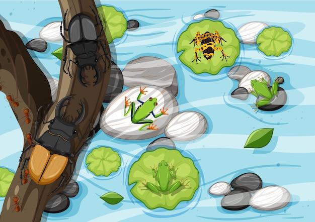 Scena aerea con coleotteri sui rami sulla palude