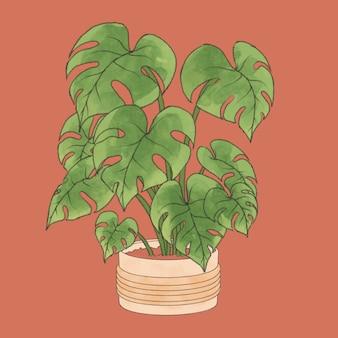 花瓶の美的な鉢植えのモンステラ植物手描きイラスト