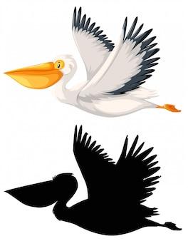 Aet of pelican character