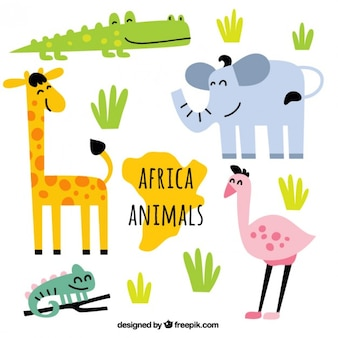 Animali dell'africa