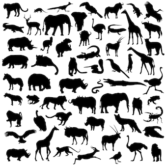 Africa safari animals wild life silhouette clip art