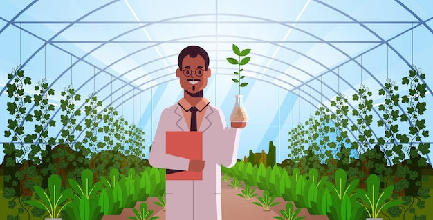African american scientist examining plant sample in test tube modern glass greenhouse interior research science agriculture farming concept flat horizontal portrait