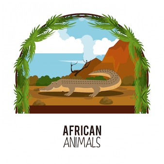 African animals cartoons