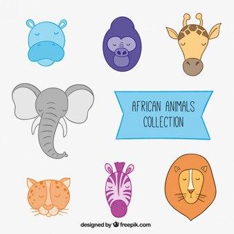 African animals heads