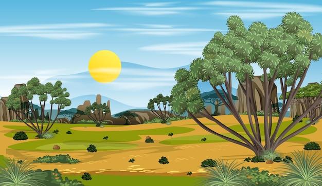 아프리카 숲 풍경 배경