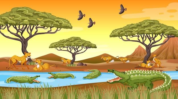 Африканский лесной пейзажный фон