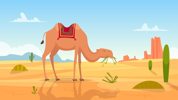 ラクダのグループ屋外荒れ地漫画の写真とアフリカの風景。