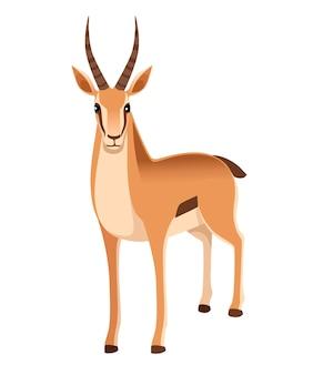 長い角を持つアフリカの野生のコウジョウセンガゼル漫画動物イラスト正面図