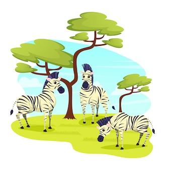 African wild zebras herd grazing in grasslands