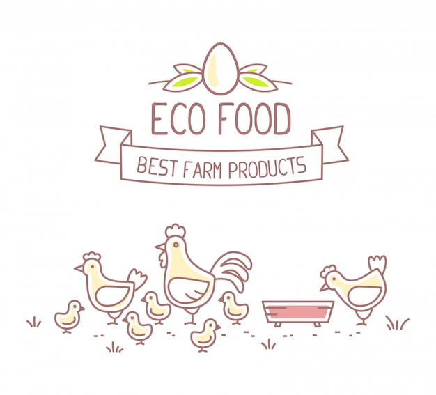 Agribusiness.  illustration of chicken  farm life with natural economy on white background. eco food concept. best farm product.