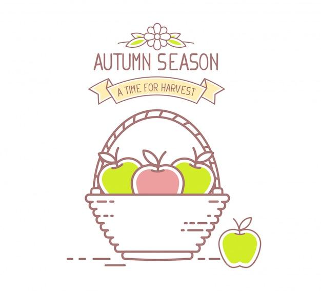 アグリビジネス。枝編み細工品バスケットのイラストは、白い背景で隔離の赤と緑のおいしいリンゴ果実でいっぱい。収穫期。秋のシーズン。