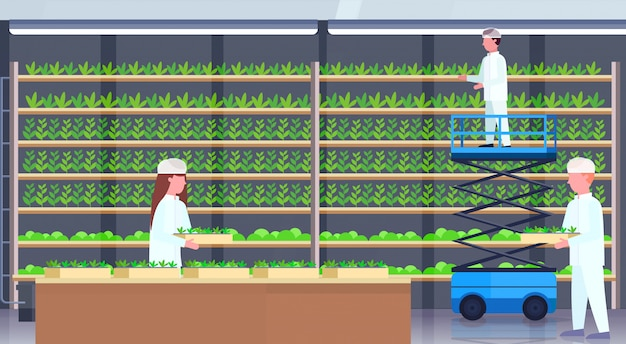 Agriculture engineers in uniform holding potted plants using scissors lift platform people working modern organic vertical farm interior green farming industry concept horizontal