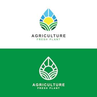 Agriculture farm with sun and fresh water drop logo concept   template