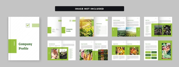 Agriculture firm company profile design