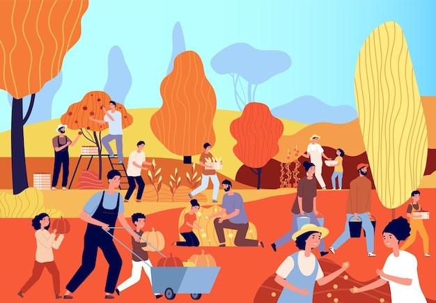 農業の人々。秋の季節、農園の農民。平らな女の男の収穫時間