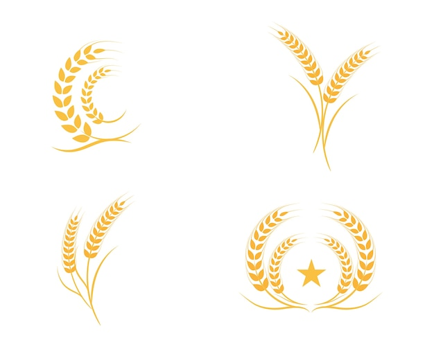 Agriculture wheat logo template