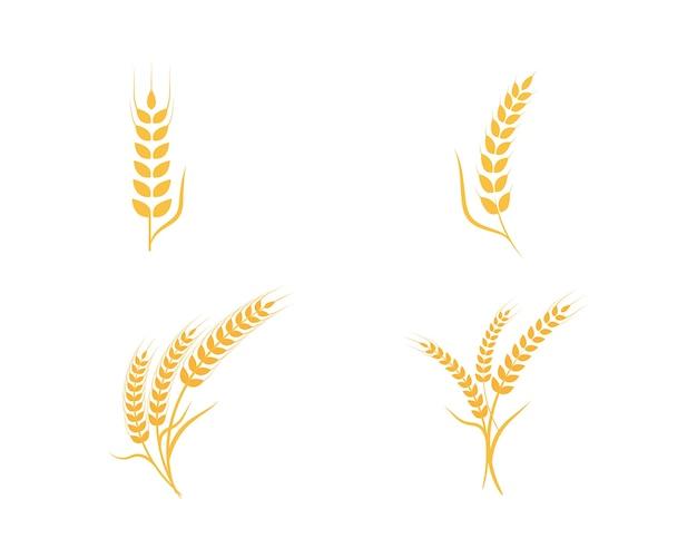 농업 밀 로고 템플릿