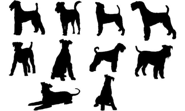 エアデールテリア犬のシルエット