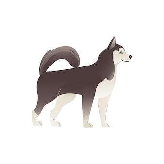 アラスカンマラミュートまたはシベリアンハスキーのかわいい北血統の犬の漫画。家畜またはペットの子犬のキャラクター。
