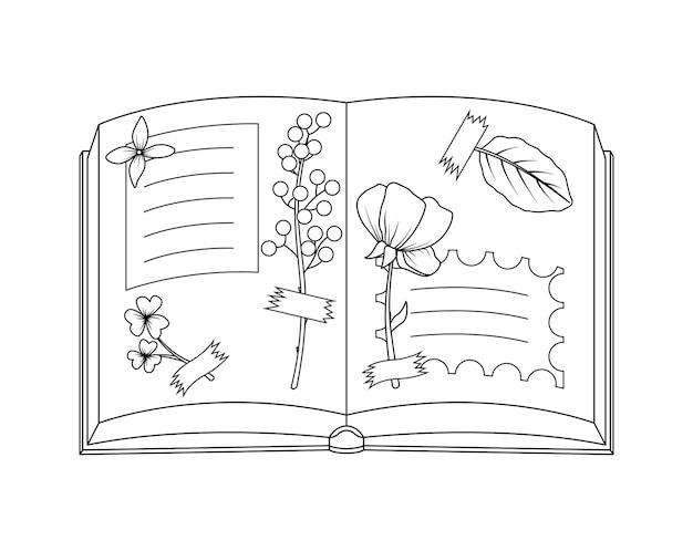 乾燥した葉がテープに接着されたアルバム。葉と花の植物標本。線画