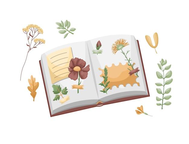 乾燥した葉がテープに接着されたアルバム。葉と花の植物標本