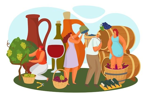 Alcohol making at vineyard, vector illustration. flat man woman character pick grape harvest, winery production, female person make press process in barrel. red vine in huge glass, bottle concept.