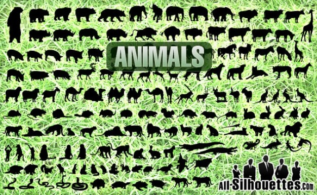 All animals vector set