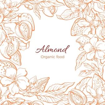 아몬드 테두리 식물학 현실적인 분기 잎 꽃 꽃 손으로 그린 꽃 그림