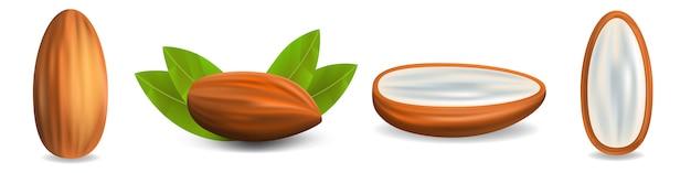 Almond icon set, realistic style