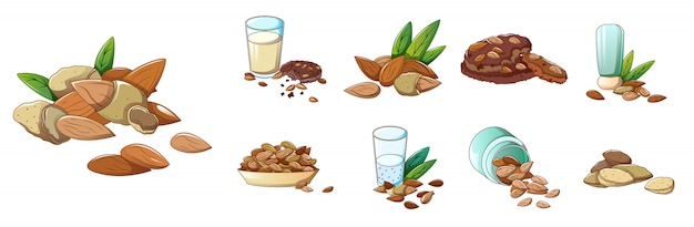 Almond icons set, cartoon style